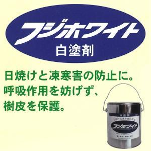 フジホワイト 白塗剤 3kg 樹皮保護材 保護剤 樹木富士商事 タ種【代引不可】|plusys|02
