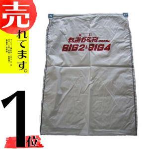 【10枚】籾殻袋収集器 BIG専用 もみがら袋 BIG袋 ビッグ袋 C型 白 クロスラム素材 オKDPZZ|plusys