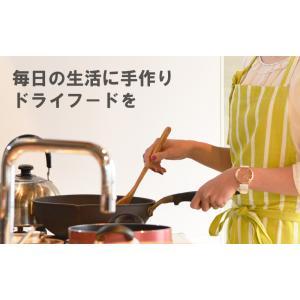 食品乾燥機 ドラッピーmini (ミニ) DSJ-mini 静岡製機 製 PDZ|plusys|03