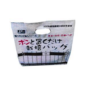 【16個】 ポンと置くだけ栽培バッグ 約3.3L 【10連・4連カットパックを培土袋で栽培】 植物栽培バッグ 苗 植栽 シダラ カ園 【代引不可】|plusys
