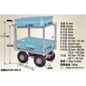 ハラックス 愛菜号 アルミ製 ハウスカー 2段積タイプ CHR-30-2 防J【代引不可】|plusys|02
