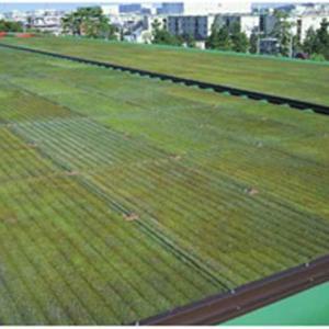 コケ緑化システム コケボード 【モス山形】屋上・屋根・壁面緑化|plusys