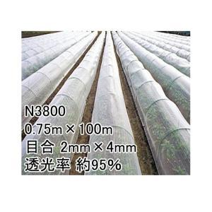 0.75m × 100m ナチュラル 防虫サンサンネット N3800 ビニールハウス トンネル などに 防虫ネット 日本ワイドクロス タ種 D|plusys