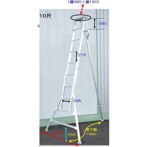 園芸三脚 アルミ製 組立式 10尺 300cm A-10 アルミス アS【代引不可】|plusys