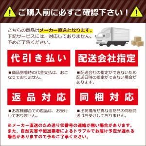 【個人宅配送不可】 全自動 育苗箱洗浄機 SW-400 ケーエス製販 【代引不可】|plusys