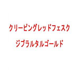 【種 10kg】 クリーピングレッドフェスク ペンローン 緑化用 芝生用 緑肥 [播種期:4〜10月] 雪印種苗 米S【代引不可】|plusys