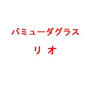 【種 2kg】 バミューダグラス リビエラ 芝生用 緑肥 [播種期:4〜7月] 雪印種苗 米S【代引不可】|plusys
