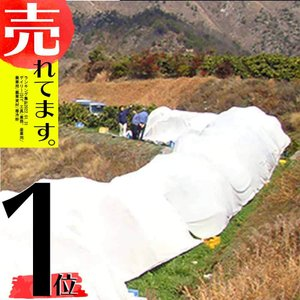 サニーセブン T-750 4m×50m 果樹保護シート 柑橘系 被覆資材 石川殖産 D|plusys