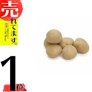 数量限定 【10kg】 種芋 ジャガイモ デジマ S・Mサイズ じゃがいも 栽培用 米S【代引不可】|plusys