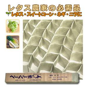ペーパーポット No.15 220鉢 2.6角×高3.8cm ニッテン 日本甜菜製糖 タ種DPZZ|plusys