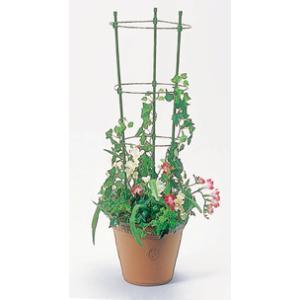 リング支柱 90cm 直径 7mm×90cm 植木鉢用 第一ビニール 金TD plusys