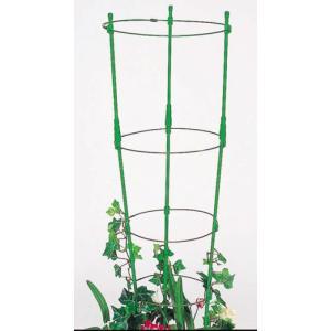 ぐんぐんリング 小 45cm〜60cm (2セット入) 植木鉢用 第一ビニール 金TD plusys