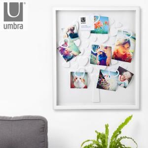 アンブラ ラブツリーフォトディスプレイ umbra LOVETREE PHOTO DISPLAY あすつく対応 ポイント10倍|plywood