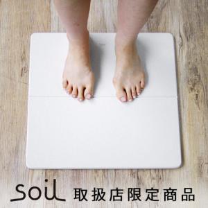 バスマット 珪藻土 ソイル soil GEM ひる石バスマット M ポイント2倍|plywood
