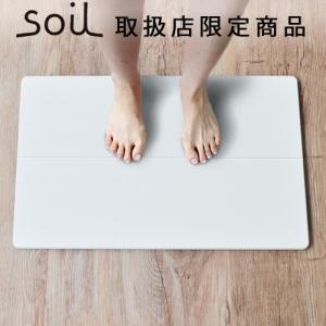 バスマット 珪藻土 ソイル soil GEM ひる石バスマット Standardサイズ ポイント2倍|plywood