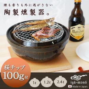 燻製器 スモーカー 長谷園 伊賀土鍋 いぶしぎん チップ付 [ 小サイズ ] 送料無料