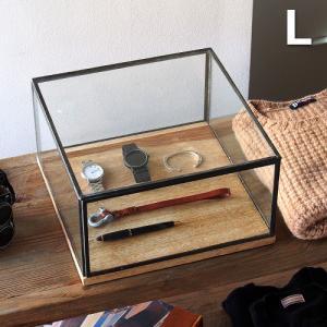 ディティール ディスプレイ キャビネット Lサイズ|plywood