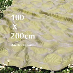 【送料無料】 クォーターリポート ドレープカーテン モーネ  [100×200cm] QUARTER REPORT Mane|plywood