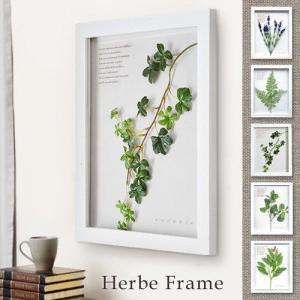 ハーブ フレーム Herbe Frame あすつく対応|plywood