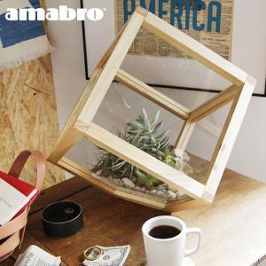 アマブロ ウッド テラリウム スクエア  Lサイズ amabro WOOD TERRARIUM Square L 送料無料 あすつく対応|plywood