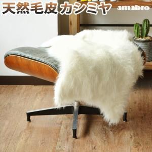 アマブロ カシミヤ ファーマット ラグ|plywood