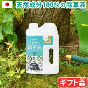 除草剤 天然 庭師さんのミネラル除草液|plywood