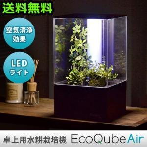 水耕栽培 空気清浄機 エコキューブエアー|plywood