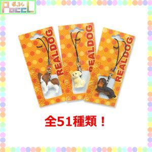 ワンちゃんのフィギアストラップ REAL DOG チャーム(犬種Bタイプ) 4996740016110 キャラクター グッズ メール便OK|poccl