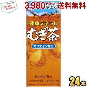 伊藤園 健康ミネラルむぎ茶 250ml紙パック 24本入 (麦茶)