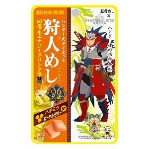 味覚糖 狩人めし(ハンターめし) 回復系エナジードリンク味 10袋入|pocket-cvs