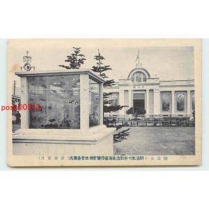 Xh5128北海道 開道50年記念北海道博 水槽?【絵葉書