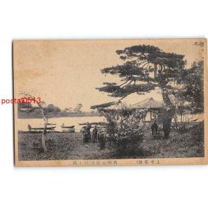 xt7639群馬 館林 邑楽公園 躑躅ヶ岡【絵葉書|pocketbooks