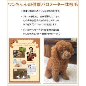 SIM color For Pets シムカラーフォーペッツ ペット用お手軽簡単シムカラーEX ボトル付きセット ブラウン pocketcompany 04