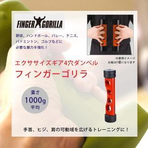 インナーマッスル 器具 肩 自宅 筋トレ 器具 腕 体幹トレ...