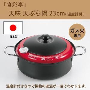 揚げ物 鍋 温度計付き 温度計付天ぷら鍋 鉄の揚げ鍋 天ぷら鍋 温度計 pocketcompany