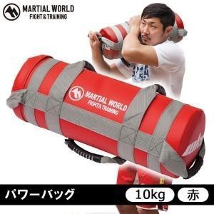 体幹トレーニング グッズ 自宅 筋トレ 器具 ダイエット 運動器具 10kg
