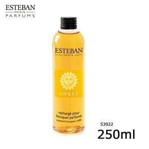 ESTEBANエステバン アンバー フレグランスリフィル 250ml 539