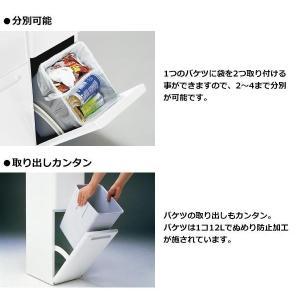 ダストボックス 分別 縦型 二段分別ダストボックス 分別ゴミ箱 スリム 2段|pocketcompany|03