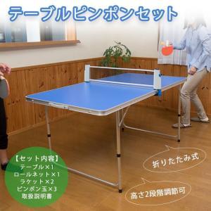 テーブルと卓球用品(ネット・ラケット・ピンポン玉)のセットです。室内はもちろん、アウトドアでも使用で...