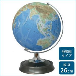 地球儀 子供 プレゼント 孫へのプレゼント 入学祝い 小学校 26cm|pocketcompany