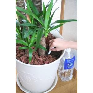 毛細管現象を利用した商品で、お出かけの際にも安心です。ペットボトルを植木鉢の背面に隠せて外観を損ねま...