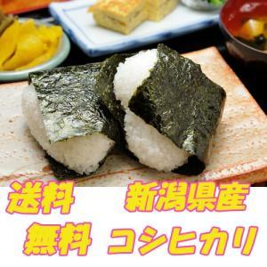 お米 新潟県産コシヒカリ 玄米2kg|pocketrice