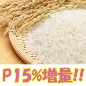 米 お米 20kg 山形県産 ササニシキ 白米18kg・玄米20kg