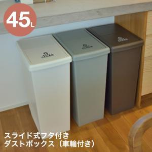 【送料無料】ダストボックス ごみ箱 スライドペール 45L 日本製 フタ付き ゴミ箱 容量45リット...