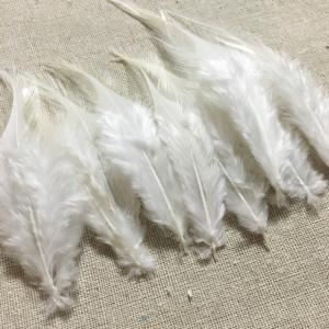 リアルフェザー 羽 ホワイト 10枚セット 5-10cm 金具付き