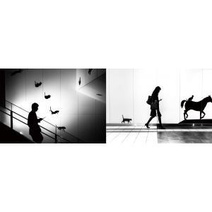 【特製ブックレット付き限定版】Strangers 日常の中にあるアートな風景|poempiecestore|03
