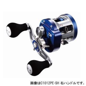 ダイワ(Daiwa) リョウガ ベイジギング C1012PE...