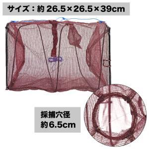 タカミヤ お魚キラー TG-103 ブラウンの詳細画像1