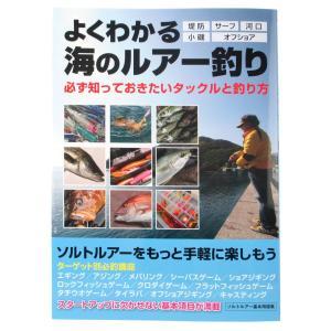 KS企画 よくわかる海のルアー釣り|point-i