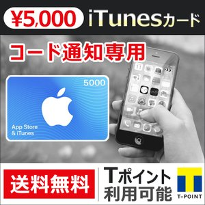 iTunesカード 5000円 Apple プリペイドカード コード 通知 ポイント消化